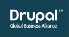 Professional Drupal Themes