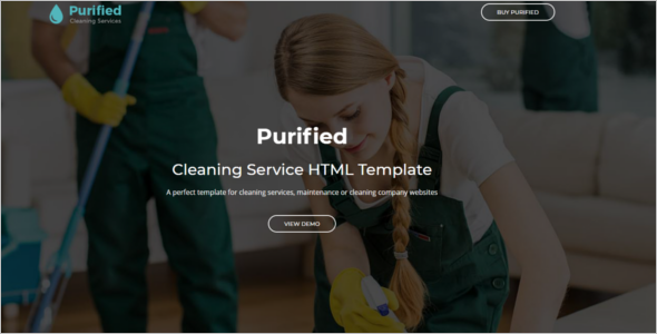 Professional Services Website Template