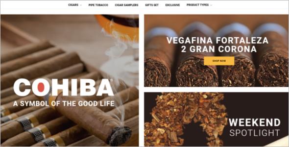 Responsive Magento Website Theme