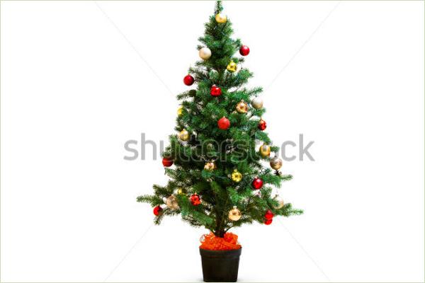 Sample Xmas Tree Idea