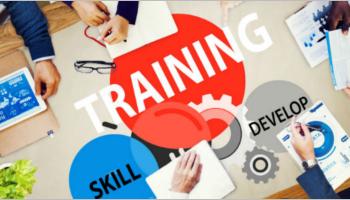 Training Website Templates