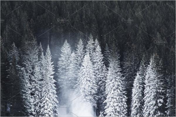 White Christmas Tree Ideas Snowman