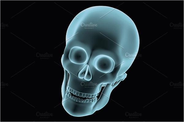 3D Printed Skull Design