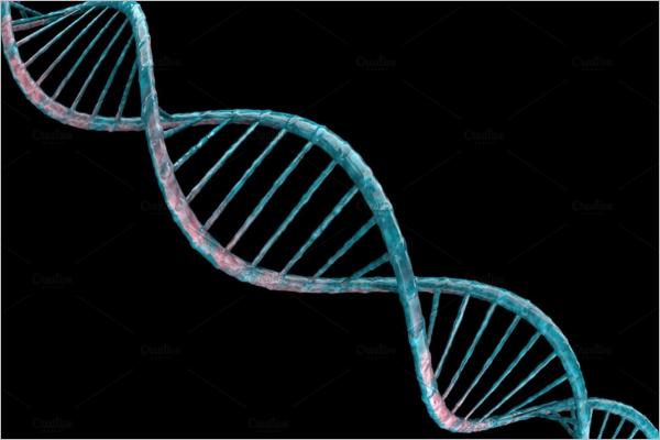 3D Rendering DNA Design