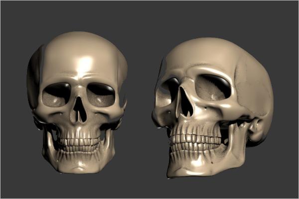 3D Scull Print Model