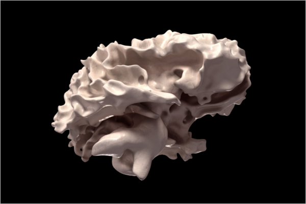 Best Brain 3D Design