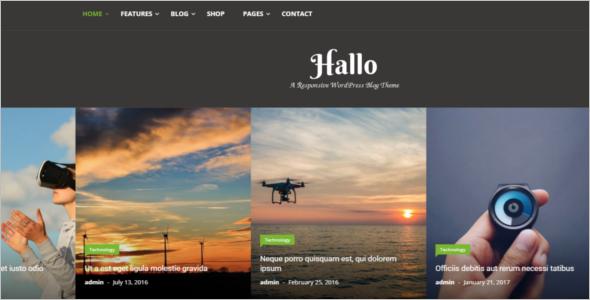 Blog WordPress Website Theme