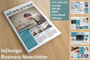 Business Brochure Newsletter Design