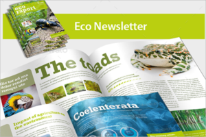 Eco Newsletter Brochure Template