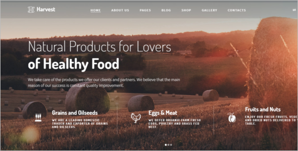 Ecommerce Harvest Joomla template
