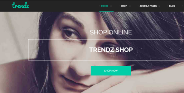 Exciting Ecommerce Joomla template