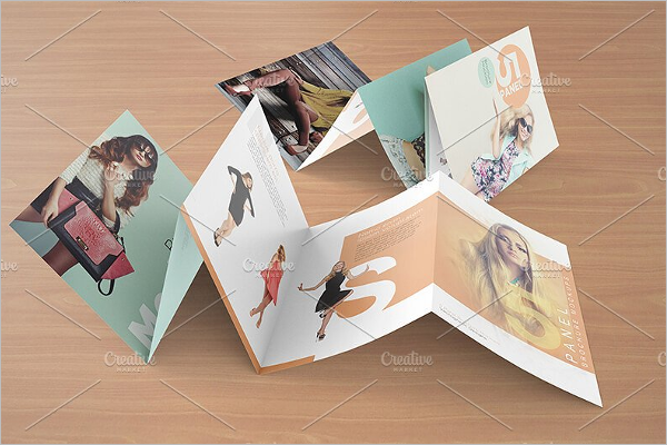 Folded CorelDraw Brochure Design