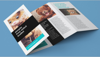 Leaflet Brochure Designs