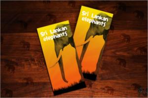 Leaflet Design Example