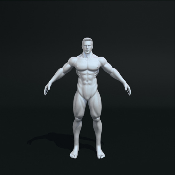 Male Body 3D Muscle Design