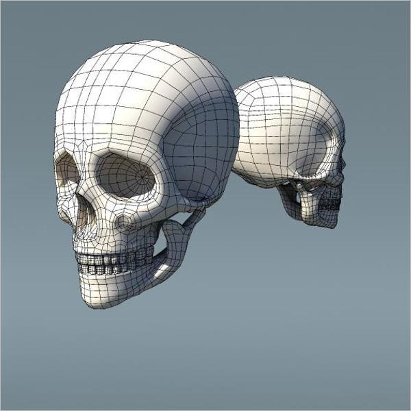 Mesh Type Skull Design