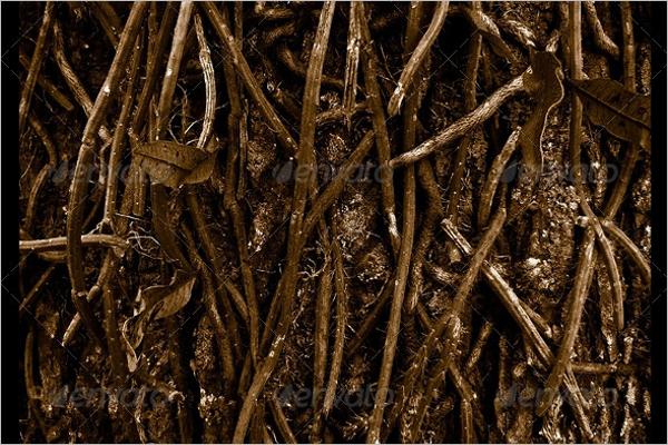 Nature Root Texture Design