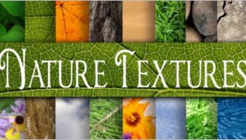 Nature Texture Designs