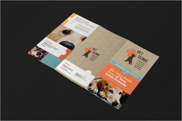 Pets Training Brochure Template