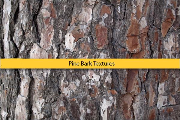 Pine Bark Free Patterns