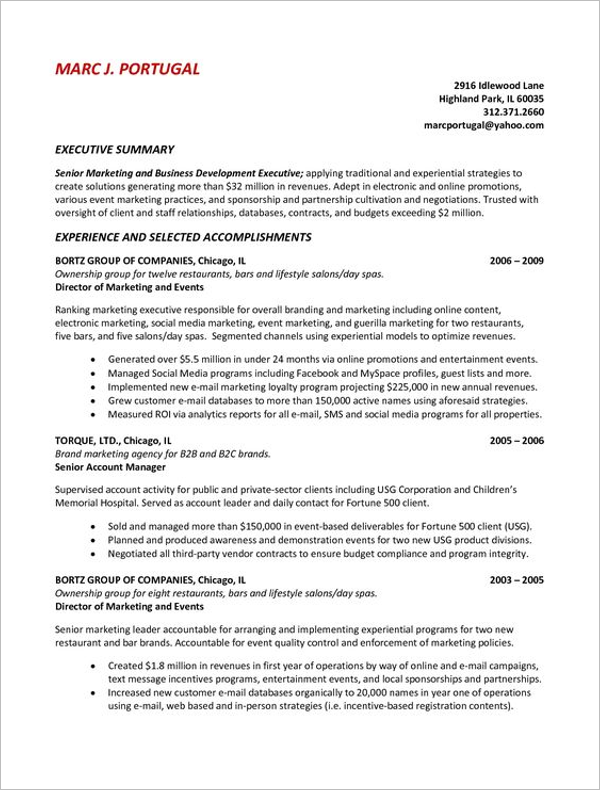 Printable Executive Summary Template