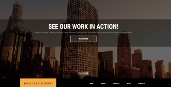 Professional Business Website Theme