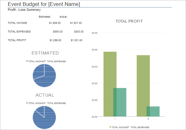 Project Summary Budget Template