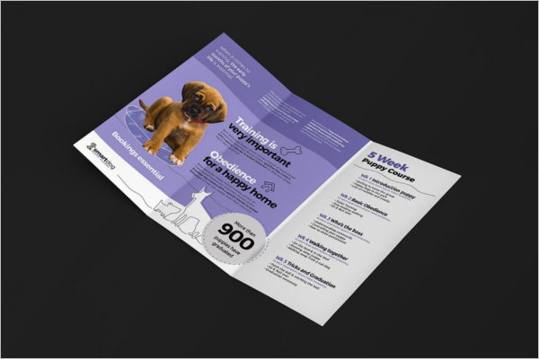 Puppy School Brochure Template