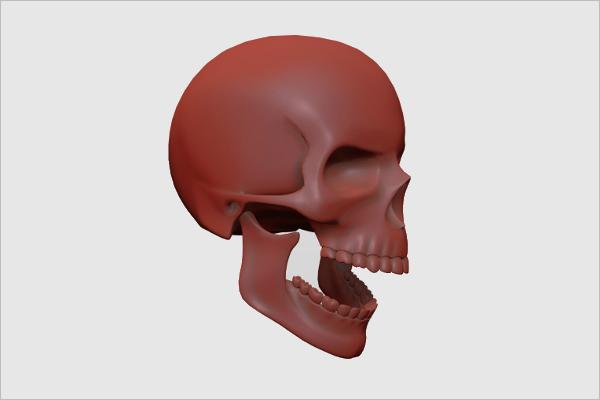 Reality Skull 3D Design
