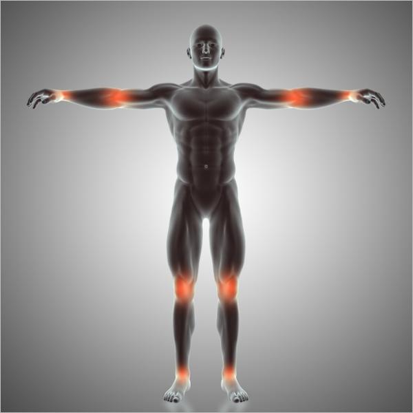 Sample Body Joint 3D Design