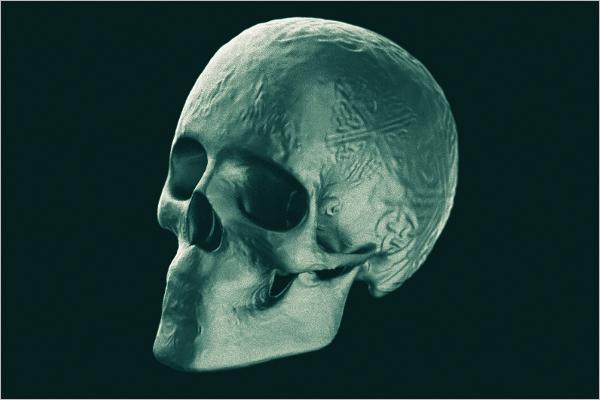 Skull Decoration 3D Model