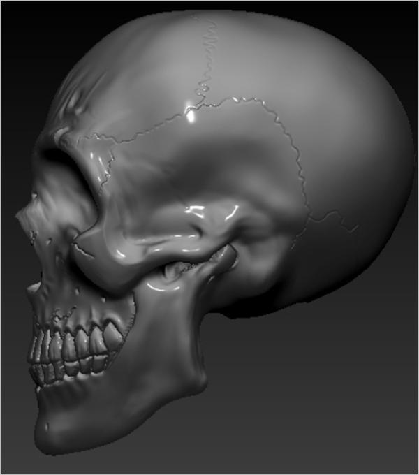 Special Skull 3D Design
