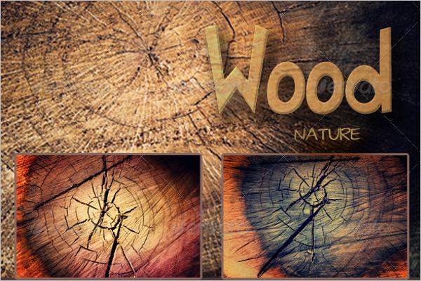 Tree Background Nature Texture