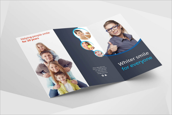 Tri-Fold Brochure Vector Design