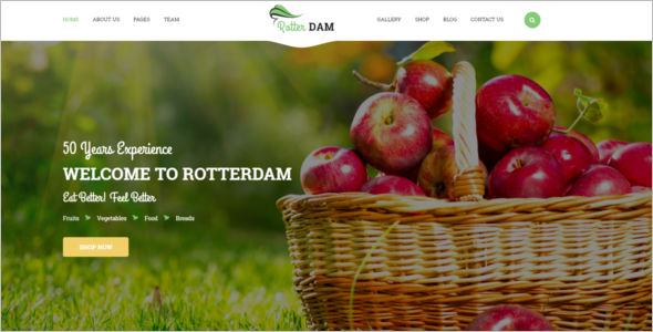 Vegetable Website Template