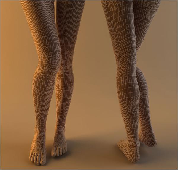 Woman Leg 3D Model