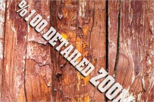 Wood Wall Texture Design