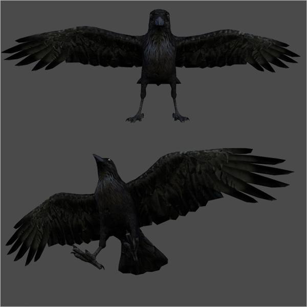 3D Maya Bird Model