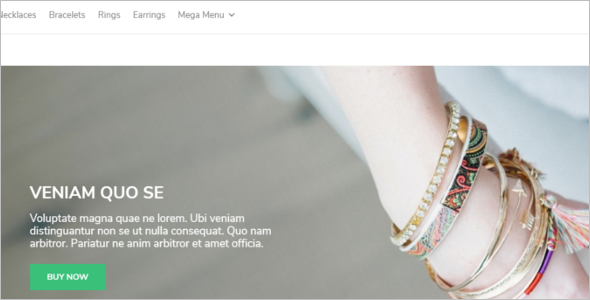 Accessories Store WooCommerce Template