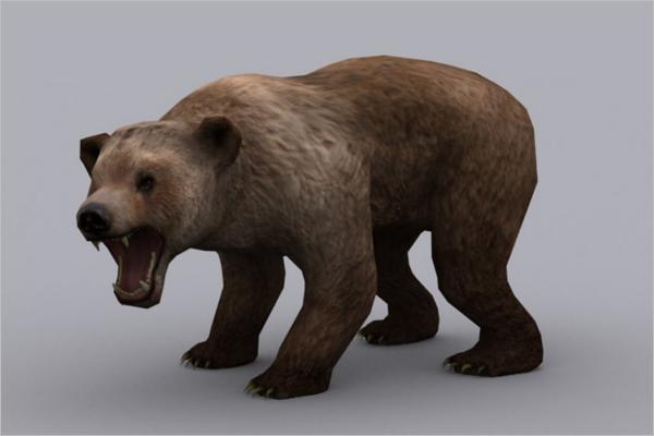 Bear 3D model Design