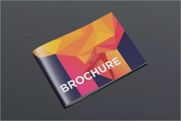 Best Brochure Template