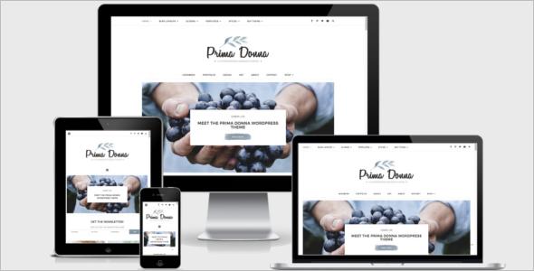 Blog Elegant Theme