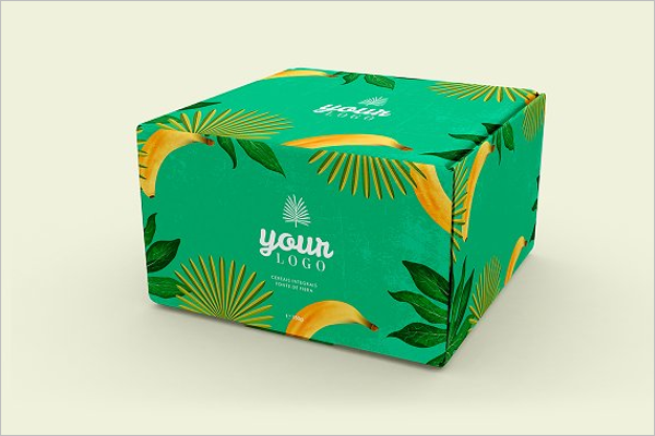 Box Design Vector
