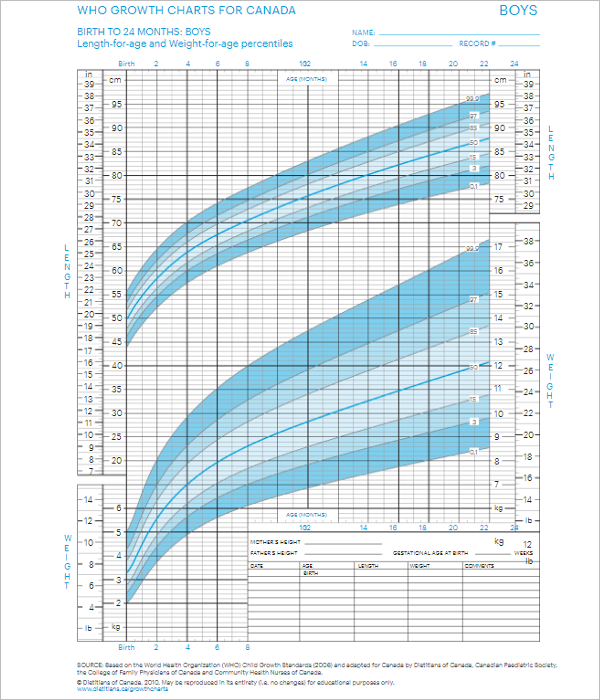 Boys Growth Chart Template