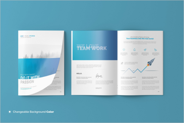A4 Booklet Design Template