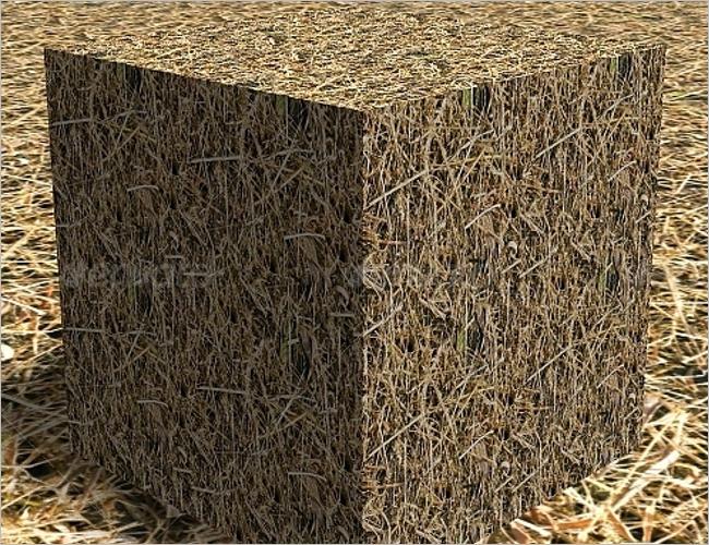 Grass Texture Vector Set Design