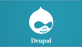Most Popular Drupal Themes