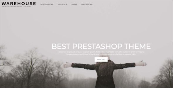 Most Popular Prestashop Themes