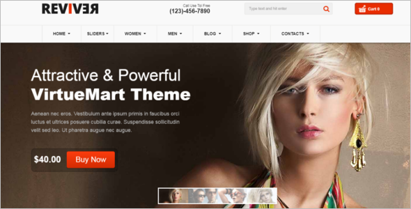 Most Popular VirtueMart Themes
