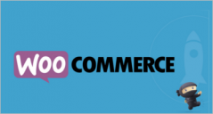 Most Popular Woocommerce Themes